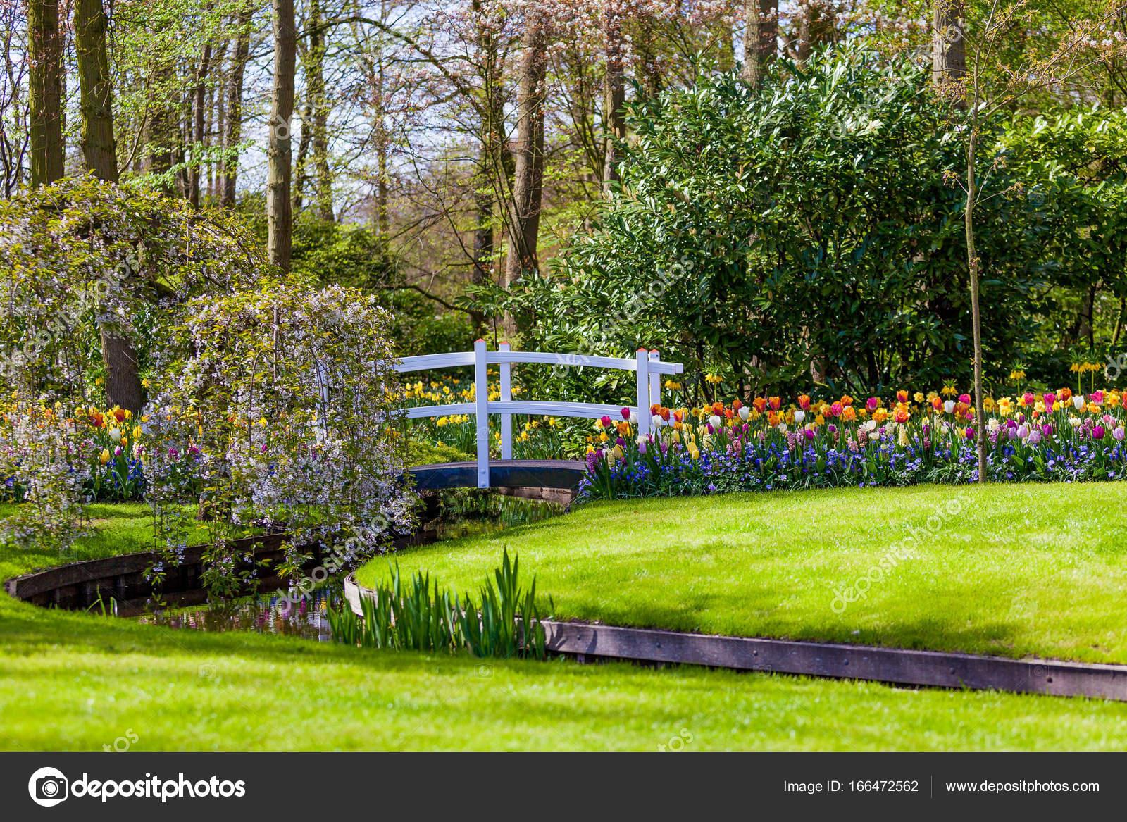 Gartenlandschaft. Moderne Gartengestaltung. Gestalteten Hof Und Garten U2014  Foto Von Ewastudio
