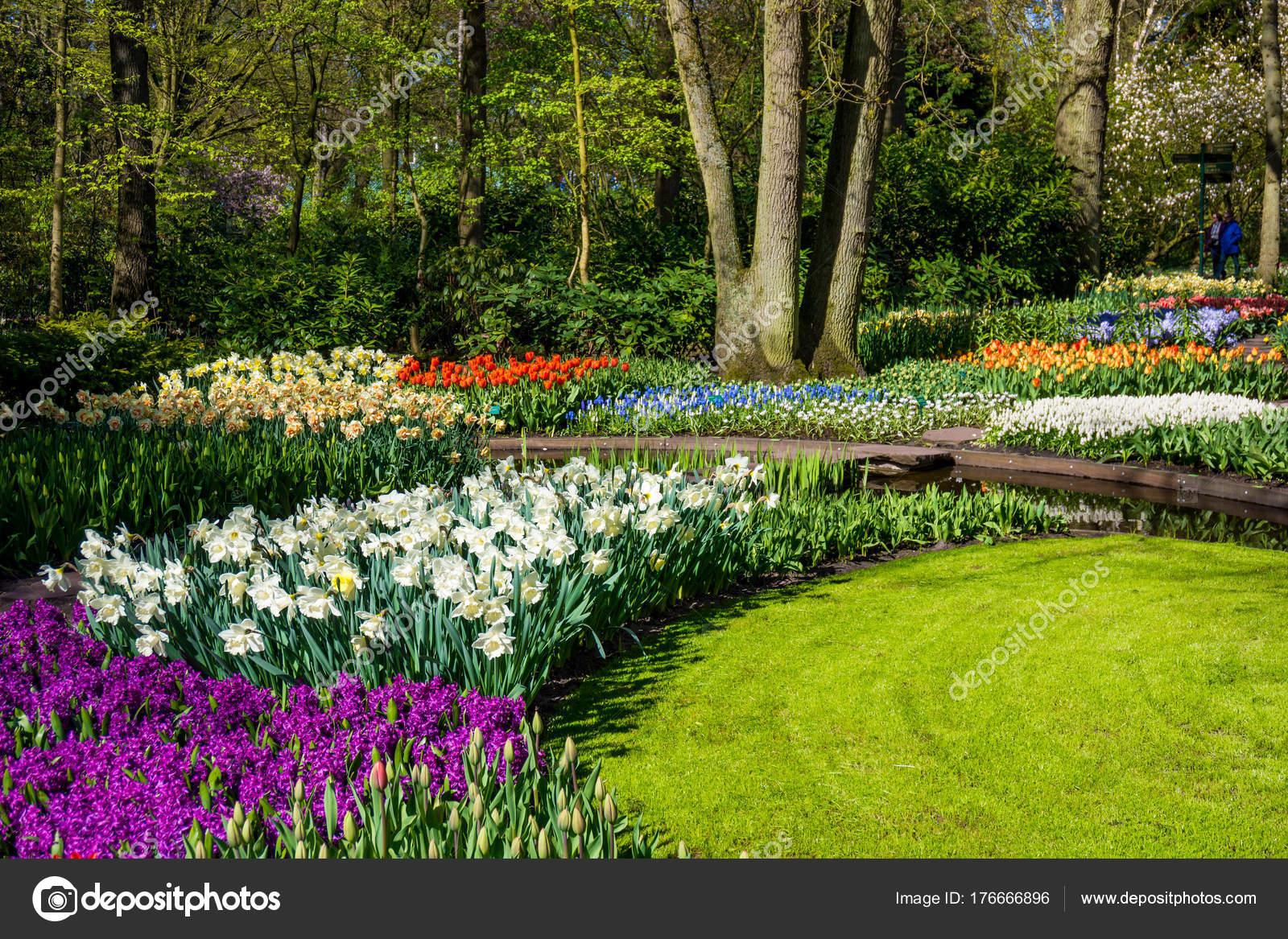 giardini di primavera