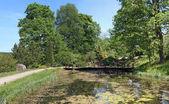 Smalll stagno rurale con ponte di legno con acqua naturale