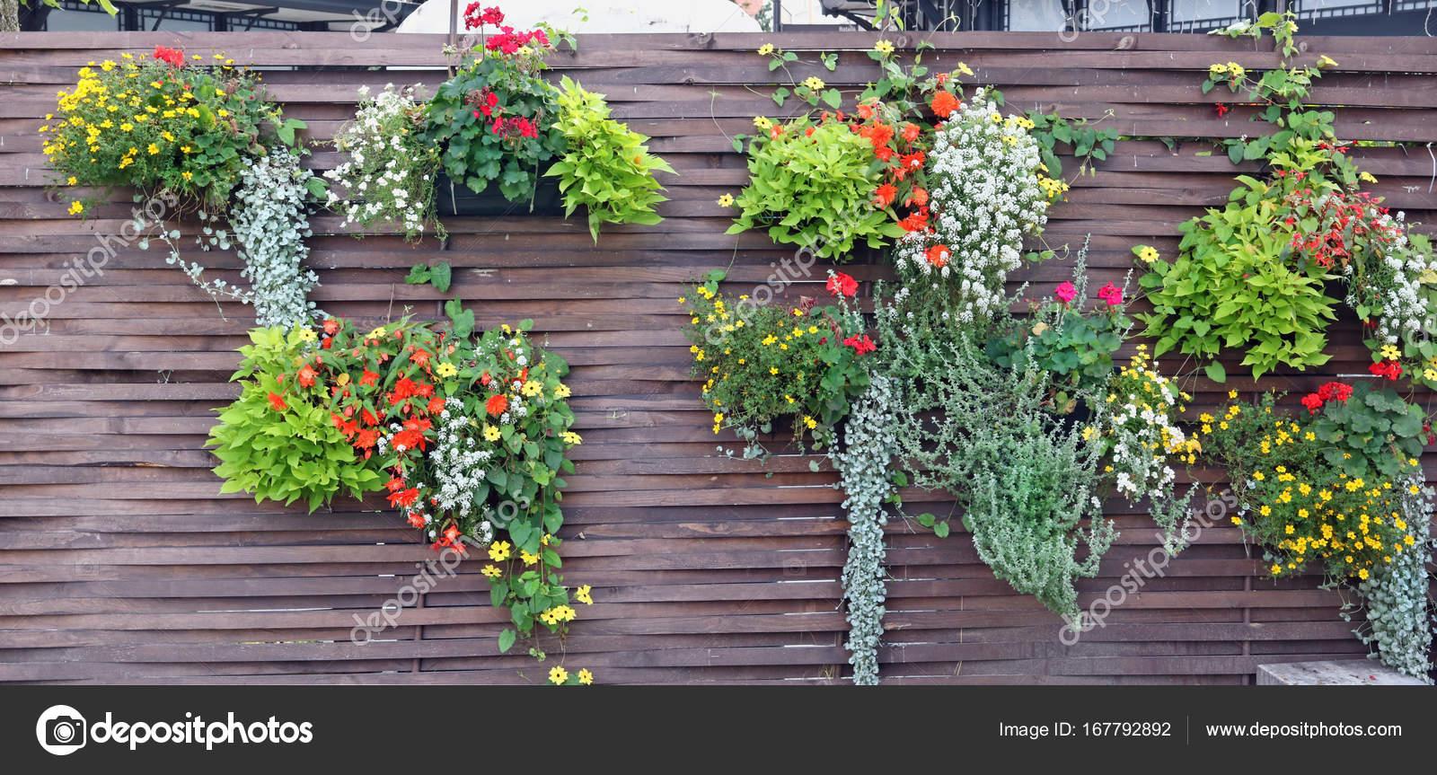 Drewniany Płot Z Doniczki I Kwitnących Roślin Zdjęcie