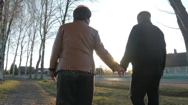 0f0f4c430 Loving elderly couple walking in the park at sunset. Nearby there is a  road. A woman in a brown leather jacket. The man is dressed in a black  sweater.