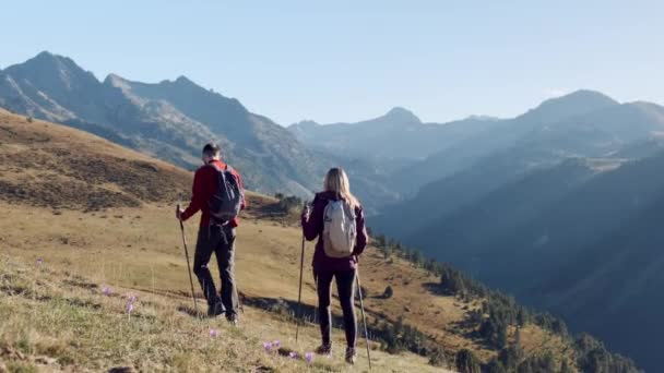 Video of two travel hikers with backpack walking while looking the landscape in the mountain. Back view.