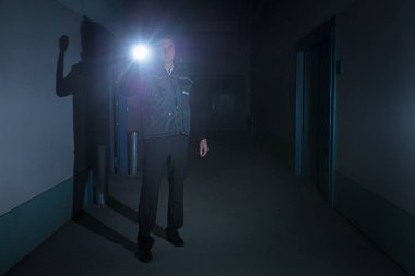 Security Guard Standing With Flashlight