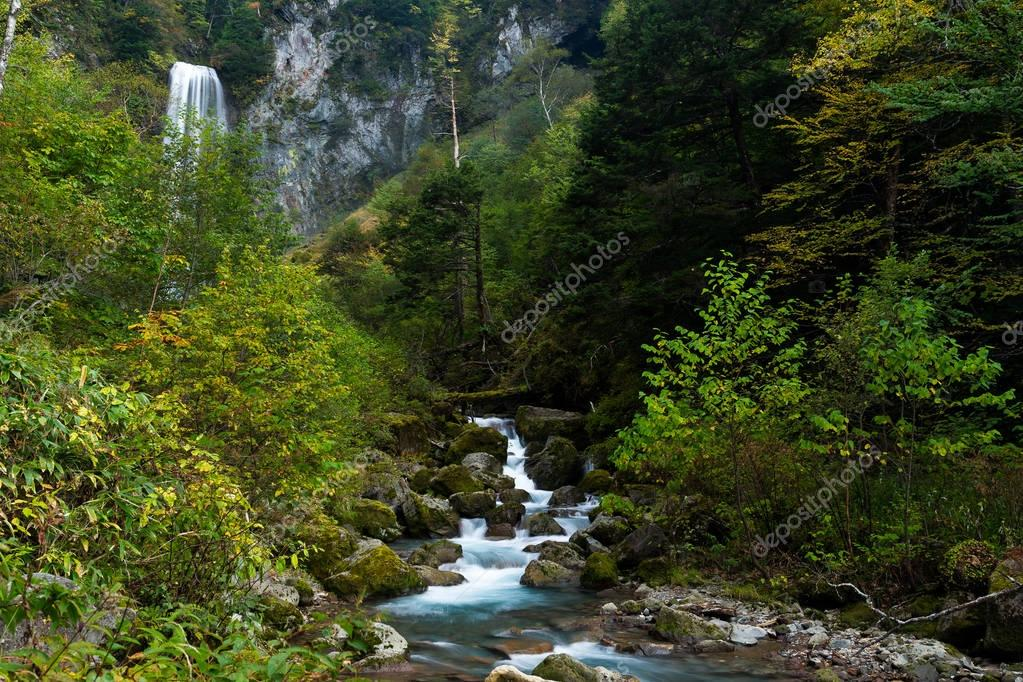 Waterfall in beautiful green rainforest