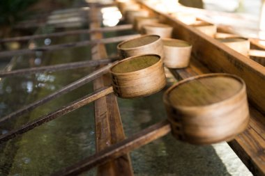 Japanese ladles in Japanese Temple