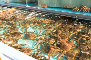 Fresh crabs in market