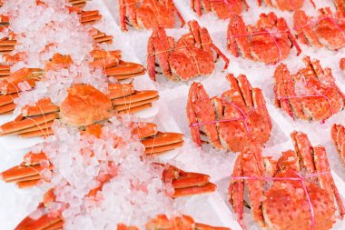 Snow crabs and king crabs