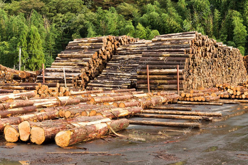a description of nafta and the timber industry Environmental and social linkages with the post-nafta forestry industry 43 a description of the final analytical framework is available on the cec's.