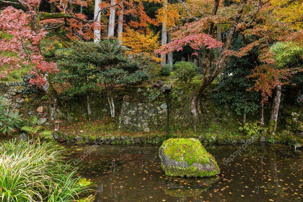 Japanese garden in autumn season
