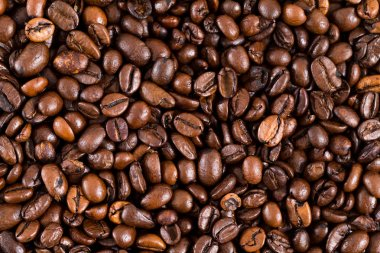 Roasted coffee bean background