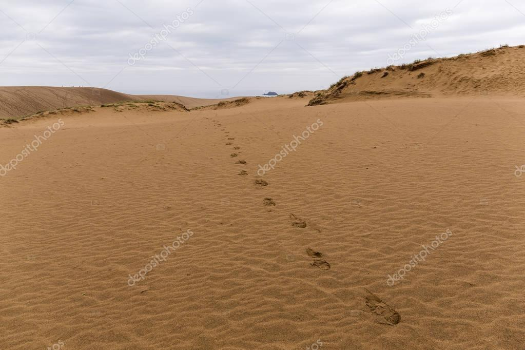 Footsteps on empty sandy coast