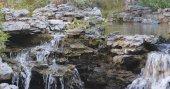 Fotografie Water pond in garden, Chinese garden