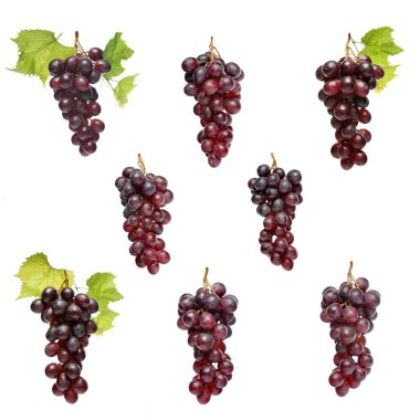 Grapes on white background
