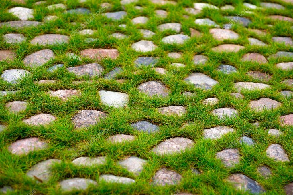 Green grass growing through the stone pavement.