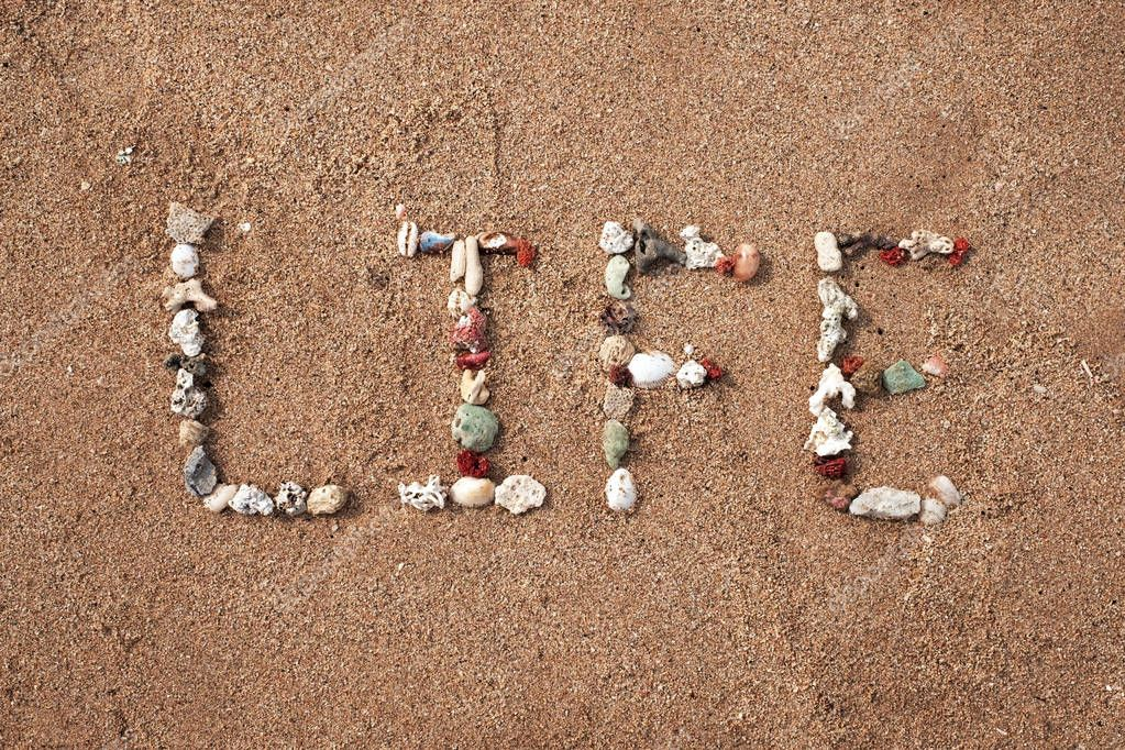 Life word made from shell on sandy seashore. Concept of positive lifestyle