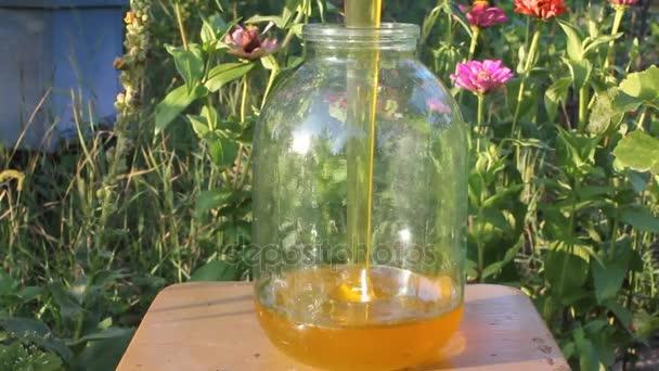Flusso di miele fresco