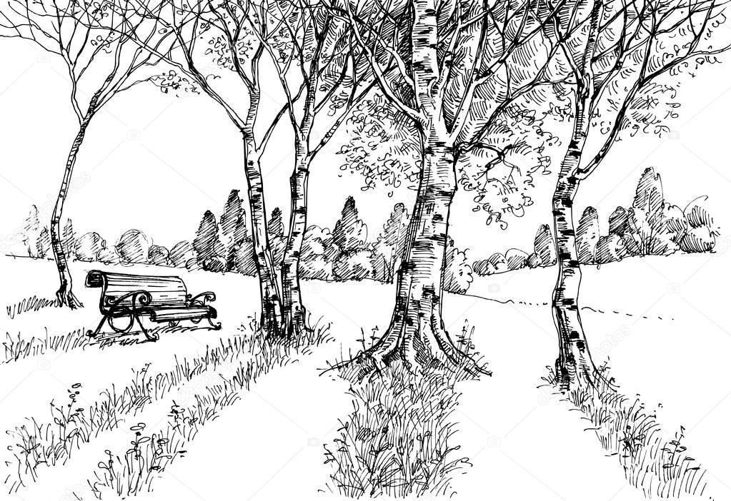 Garten in der sonne zeichnen eine bank im park stockvektor danussa 127863726 - Garten zeichnen ...