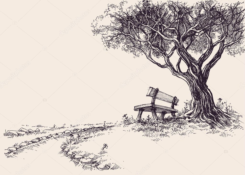 Park sketch. A wooden bench under the tree