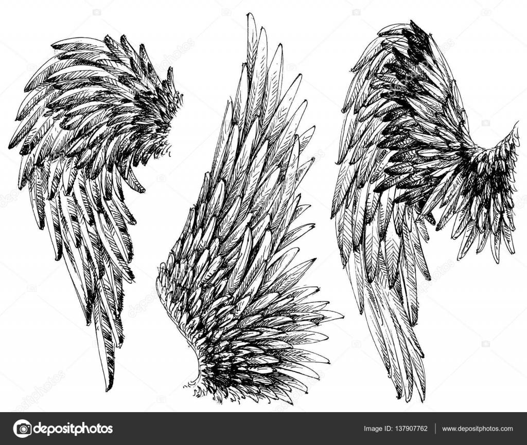 Wings drawings set — Stock Vector © Danussa #137907762