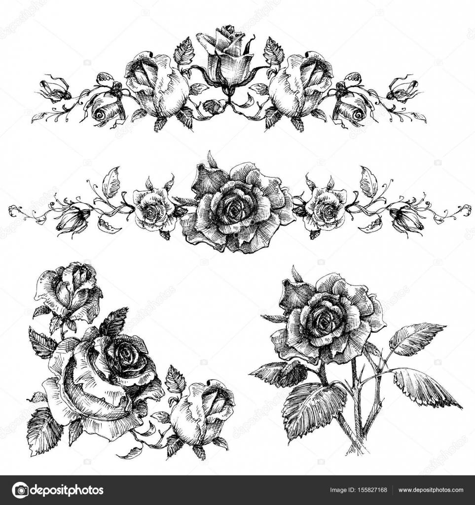 Elementi Di Disegno Della Rosa Ghirlande E Mazzi Di Fiori