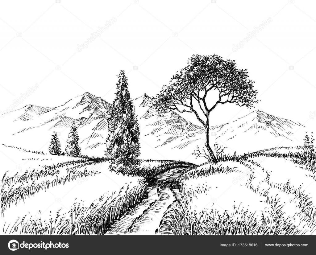 Außergewöhnlich Feld-Landschaft-Bleistift Zeichnung — Stockvektor © Danussa #173518616 @YM_16
