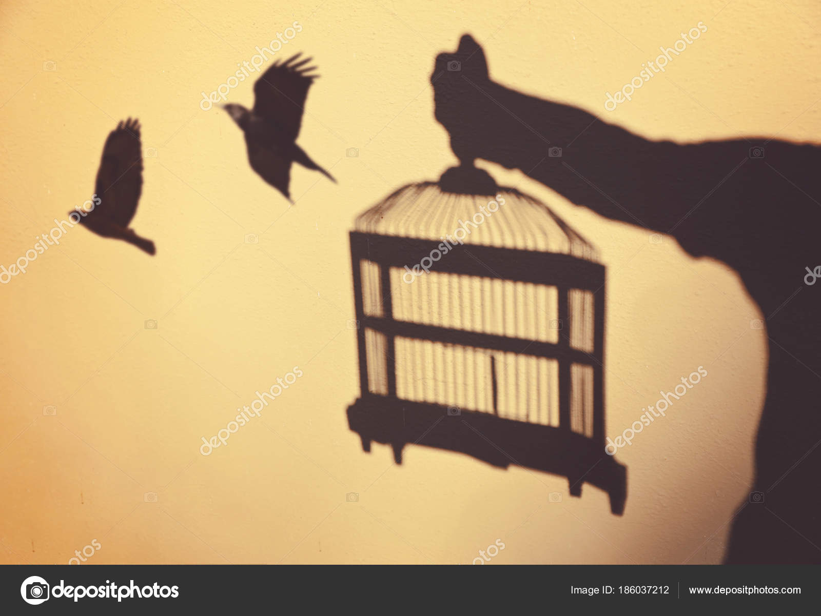surreal concept being set free with birds flying out of a cage held ...