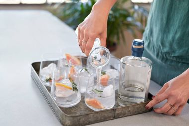 Woman pouring tonic soda water into glasses, preparing alcoholic beverages for party