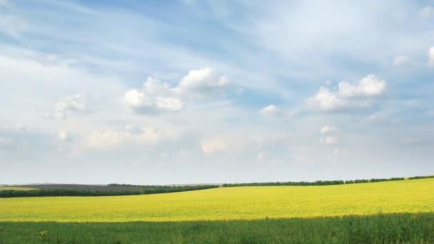 smyčka bílé mraky na modré obloze nad žlutou řepkové pole.