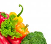 verdura fresca raccolta