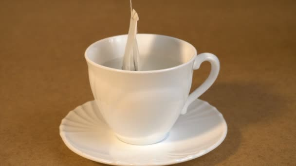 brew teabag in Cup of tea