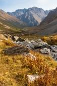 Paesaggio della montagna di Tien Shan