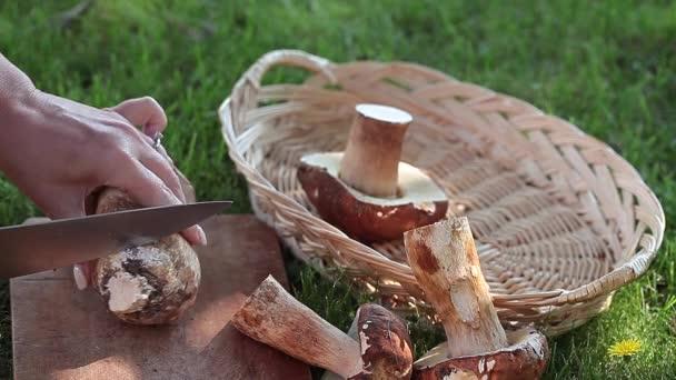 Odstranit třeně houby