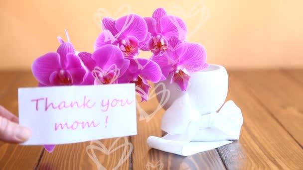 schöne Phalaenopsis Orchideenblüten