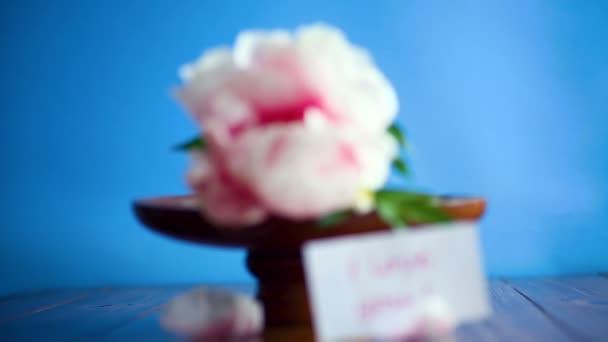 gyönyörű rózsaszín bazsarózsa