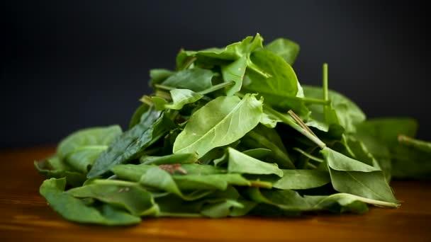 frissen vágott organikus sóska levelek fából készült asztalon