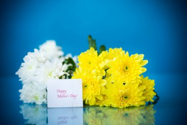 bouquet of white chrysanthemums with a greeting card for mom on a blue background