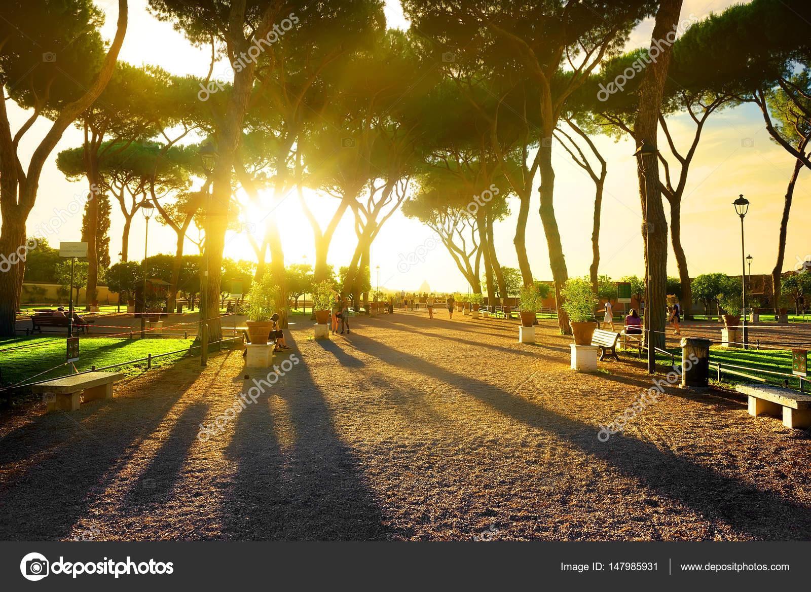 Il giardino degli aranci roma parco savello il giardino degli aranci giardino degli aranci - Il giardino degli aranci frattamaggiore ...