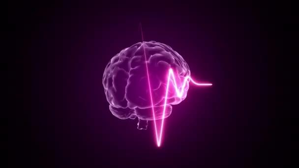 Srdeční puls a mozková animace 3d. Lékařské a vědecké. Pozadí tlukotu srdce. 4k.