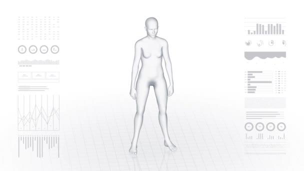Dívka s patologií pohlavních orgánů. 3D tělo žen. Rotující animace a detailní záběr ženské lidské struktury. Záběry 4k HUD.