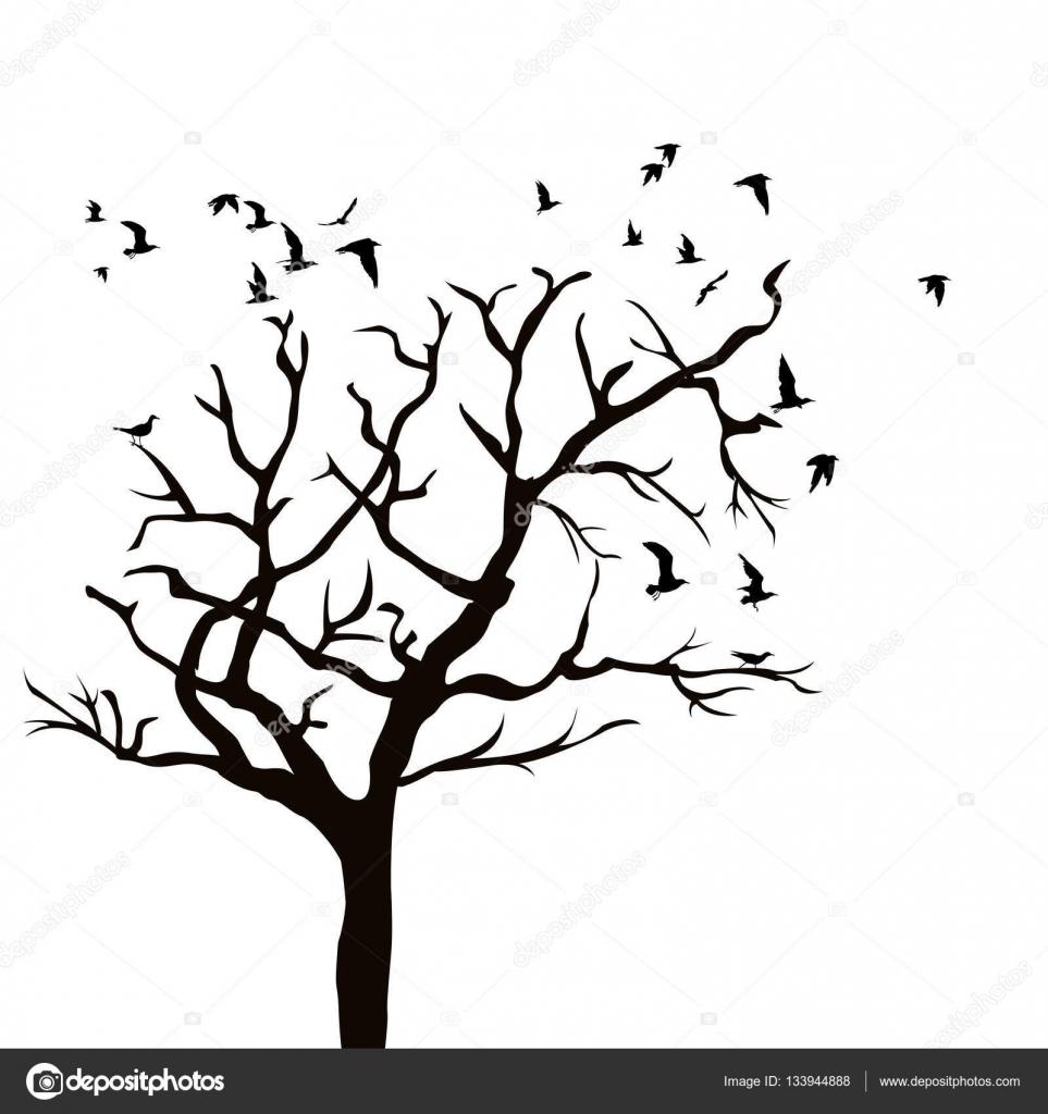 Arbol sin hojas silueta con pajaros silueta de un rbol for Arboles de hoja perenne sin fruto