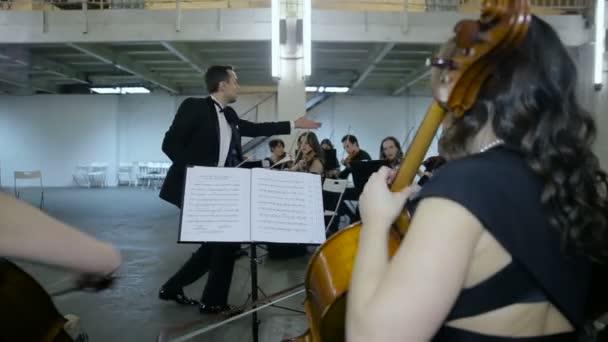 Zenész játszik a symphony hall-klasszikus zene