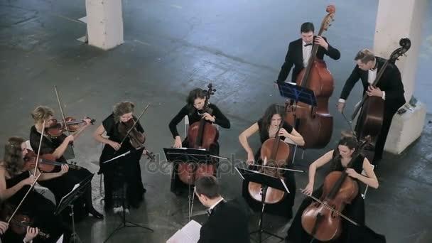 увлекся, что в симфоническом оркестре сисястые скрипачки с глубокой глоткой тоже виду, обтянуты