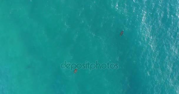 Levelei a vízen úszó a víz felszínén a dron