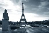 Eiffelturm mit Vogel auf Statue. Trocadero Platz. Paris. Frankreich. Blau grau Tönen