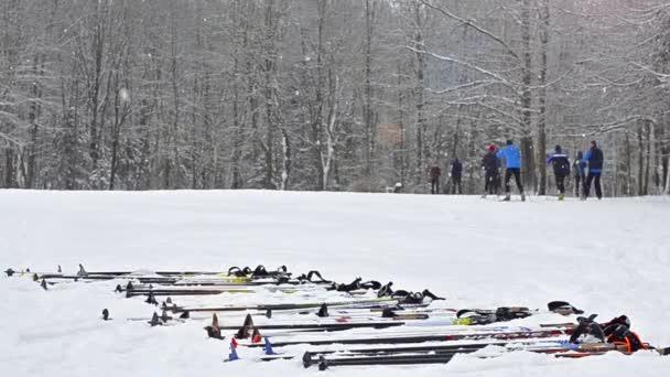 Vybavení na lyže - lyže a hůlky