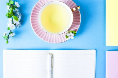 Open notebook with a cup of tea and colored notebooks on a blue background. Spring workplace with flowering branches