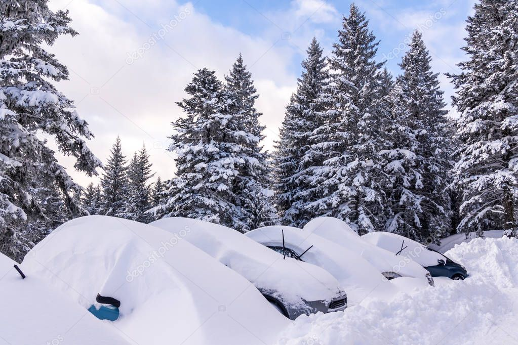 Cars buried under the snow