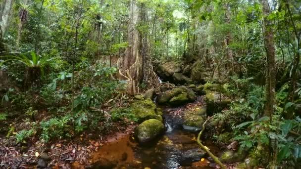 Madagascar beautiful landscape with small creek