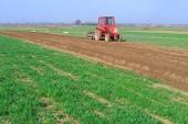Farmář na traktoru zpracovává pole