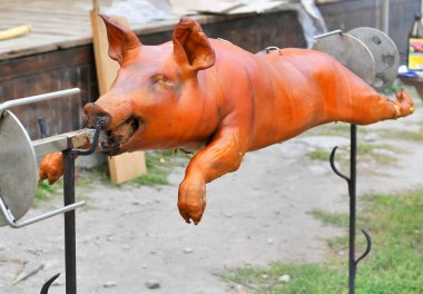 Piglet on a spit over a bonfire flame. Kamianets-Podilskyi, Ukraine, 2019. Festival of Historical reenactment . Old Castle.
